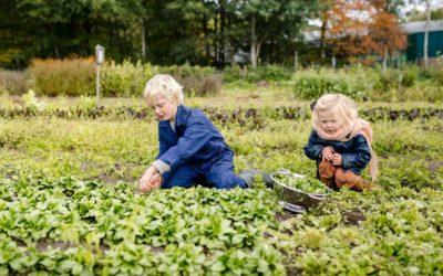 Grond aankopen voor duurzame landbouw
